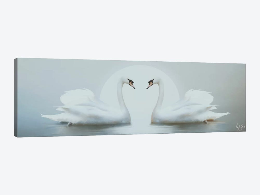 Moonlight Swans by Bente Schlick 1-piece Canvas Art