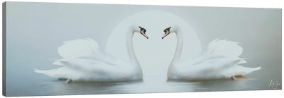 Moonlight Swans Canvas Art Print