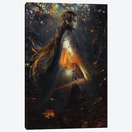 Phoenix Warrior Canvas Print #BNT36} by Bente Schlick Canvas Artwork