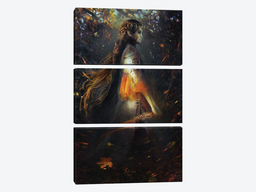 Phoenix Warrior 3-piece Canvas Art