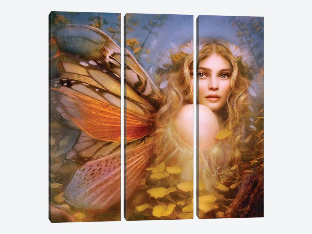 Primera by Bente Schlick 3-piece Canvas Wall Art