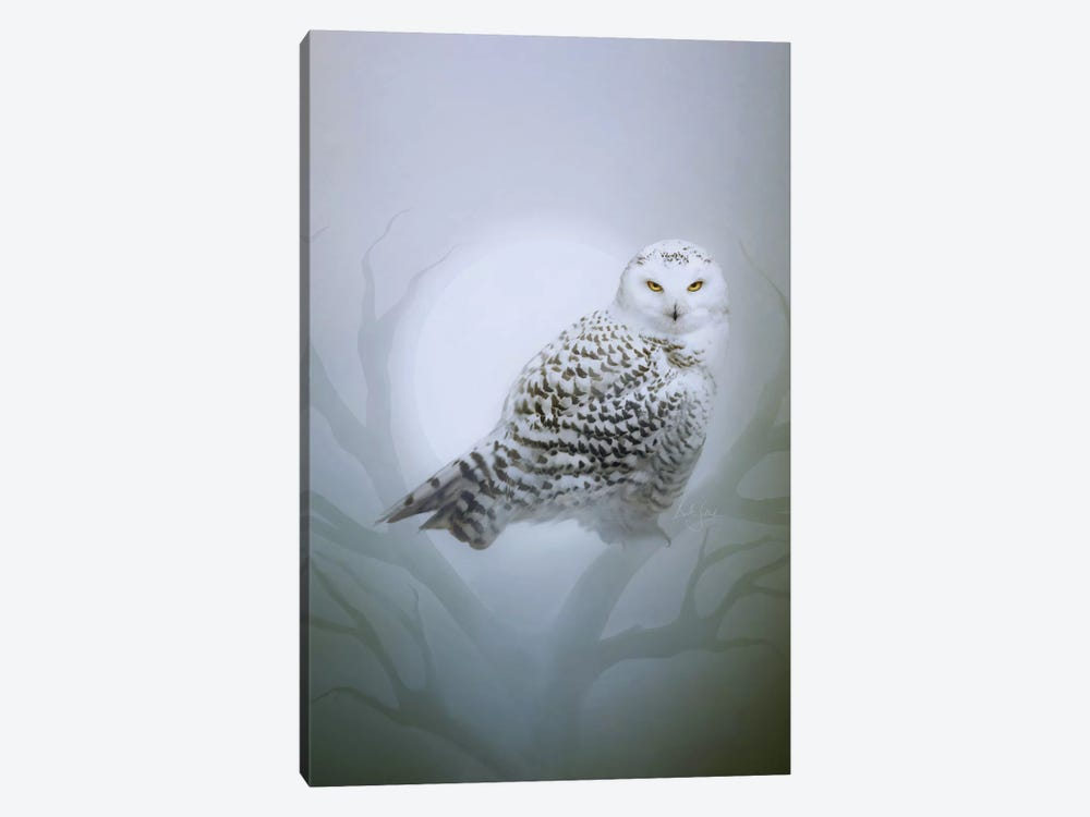 Snow Owl by Bente Schlick 1-piece Canvas Print