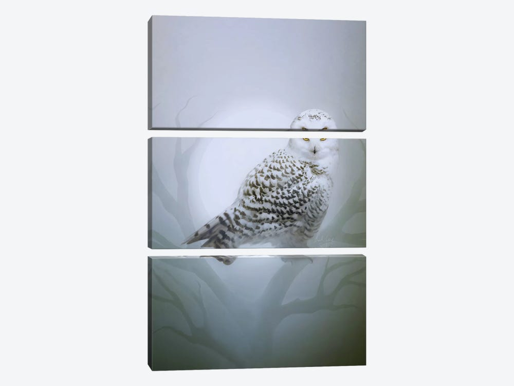 Snow Owl by Bente Schlick 3-piece Canvas Art Print