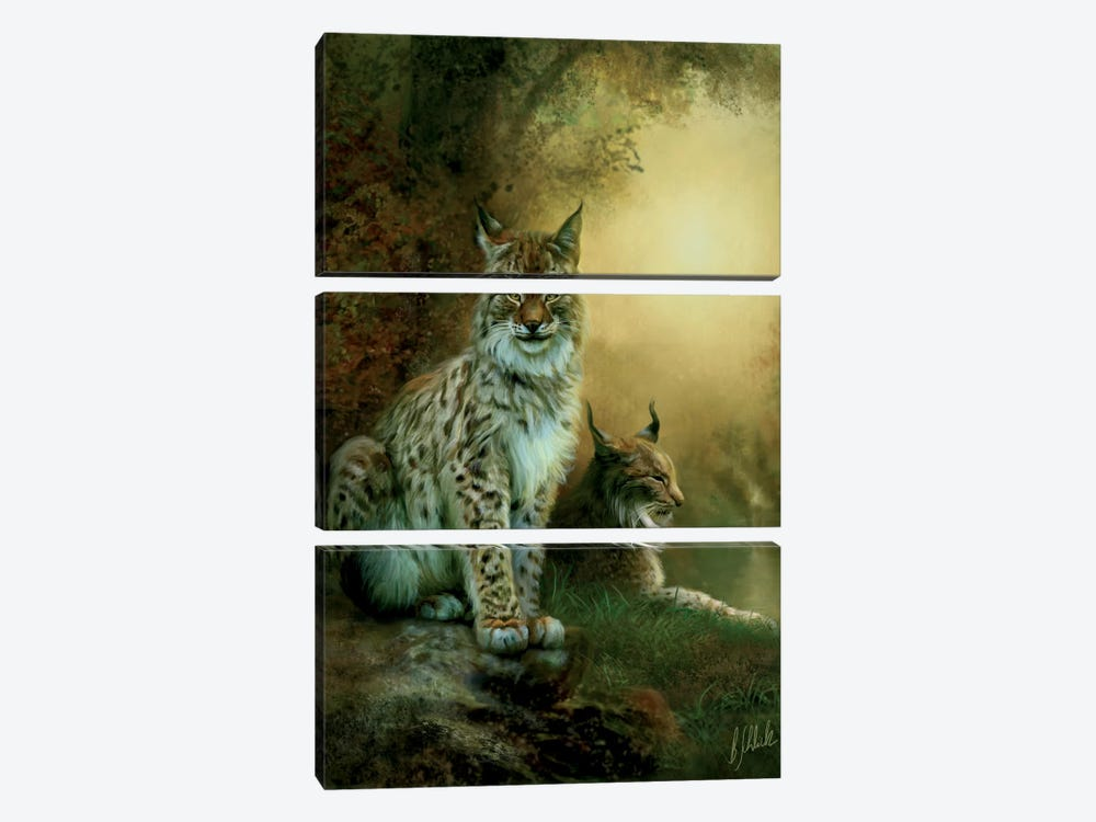 Two Lynxes by Bente Schlick 3-piece Canvas Artwork