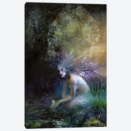 Chatoyant Canvas Print #BNT7} by Bente Schlick Canvas Artwork