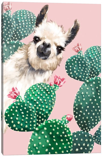Llama And Cactus Canvas Art Print