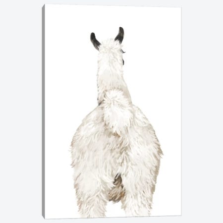 Llama Butt Canvas Print #BNW102} by Big Nose Work Canvas Artwork
