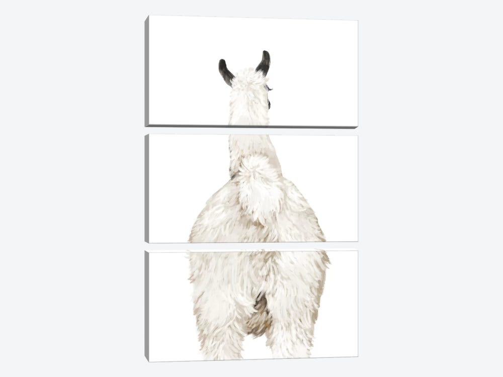 Llama Butt by Big Nose Work 3-piece Canvas Print
