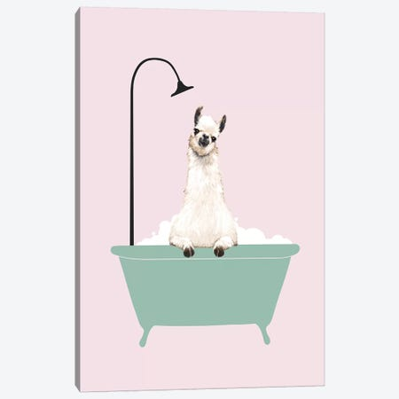 Llama Enjoying Bubble Bath Canvas Print #BNW103} by Big Nose Work Canvas Artwork