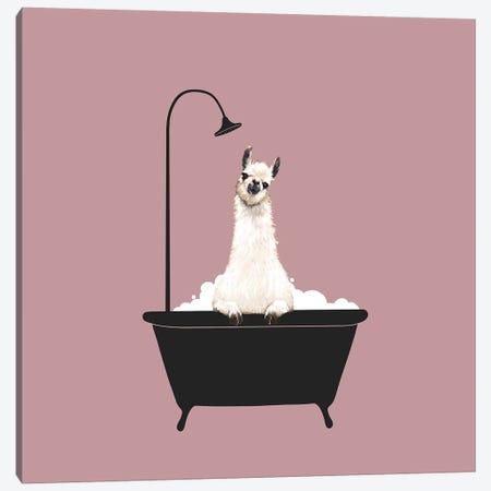 Llama In Bath Tub Canvas Print #BNW104} by Big Nose Work Canvas Art Print
