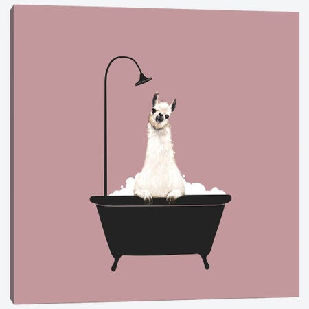 Llama In Bath Tub Canvas Print #BNW104} by Big Nose Work Canvas Art Print