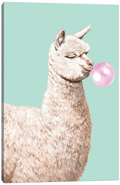 Playful Alpaca Chewing Bibble Gum In Green Canvas Art Print