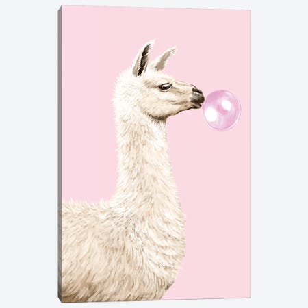 Playful Llama Chewing Bubble Gum In Pink Canvas Print #BNW107} by Big Nose Work Canvas Print