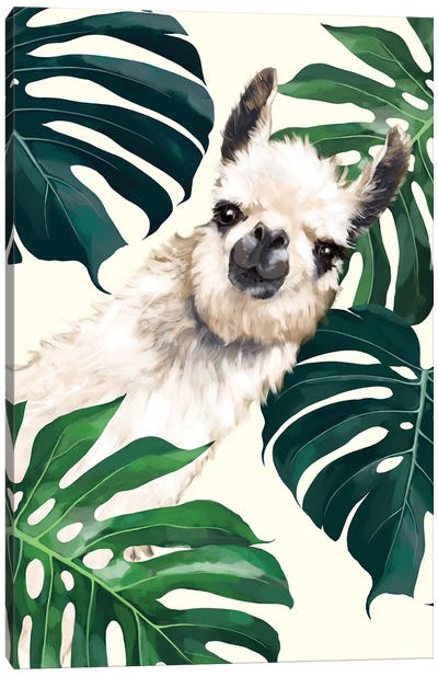 Sneaky Llama With Monstera Canvas Art Print
