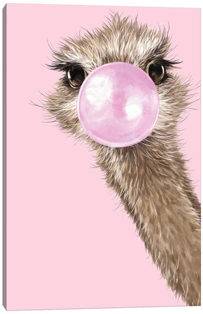 Ostrich With Bubble Gum In Pink Canvas Art Print