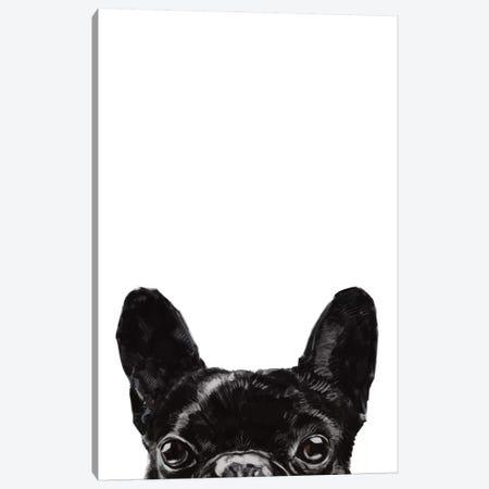 Peeking Bulldog Canvas Print #BNW116} by Big Nose Work Canvas Artwork