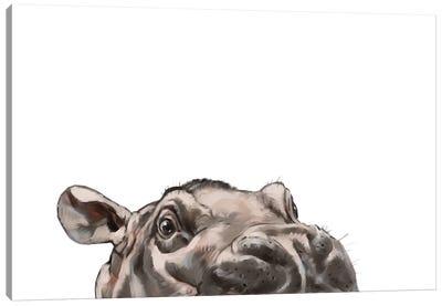 Peeking Hippo Canvas Art Print