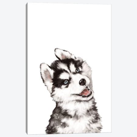 Baby Husky Canvas Print #BNW13} by Big Nose Work Canvas Artwork