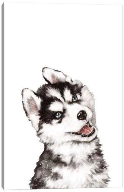 Baby Husky Canvas Art Print