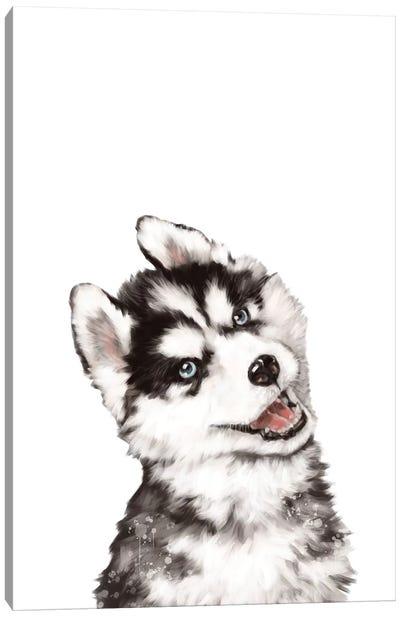 Baby Husky Canvas Art Print
