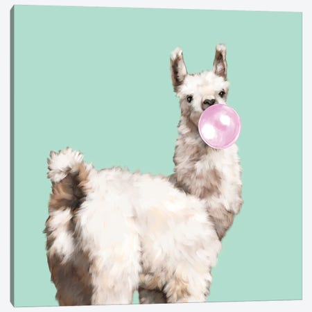 Baby Llama Blowing Bubble Gum Canvas Print #BNW15} by Big Nose Work Art Print