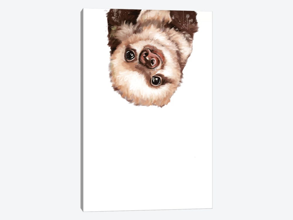 Baby Sloth by Big Nose Work 1-piece Canvas Art Print