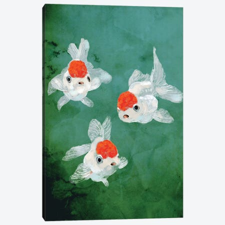 3 Goldfish Canvas Print #BNW1} by Big Nose Work Canvas Wall Art