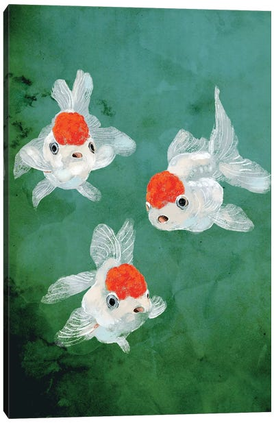 3 Goldfish Canvas Art Print