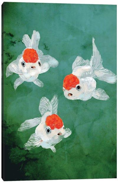 3 Goldfish Canvas Art Print