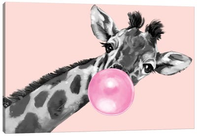 Sneaky Giraffe Blowing Bubble Gum In Pink Canvas Art Print