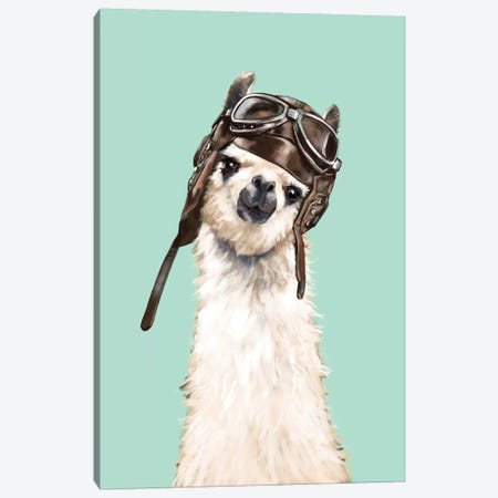 Cool Pilot Llama Canvas Print #BNW41} by Big Nose Work Canvas Art Print