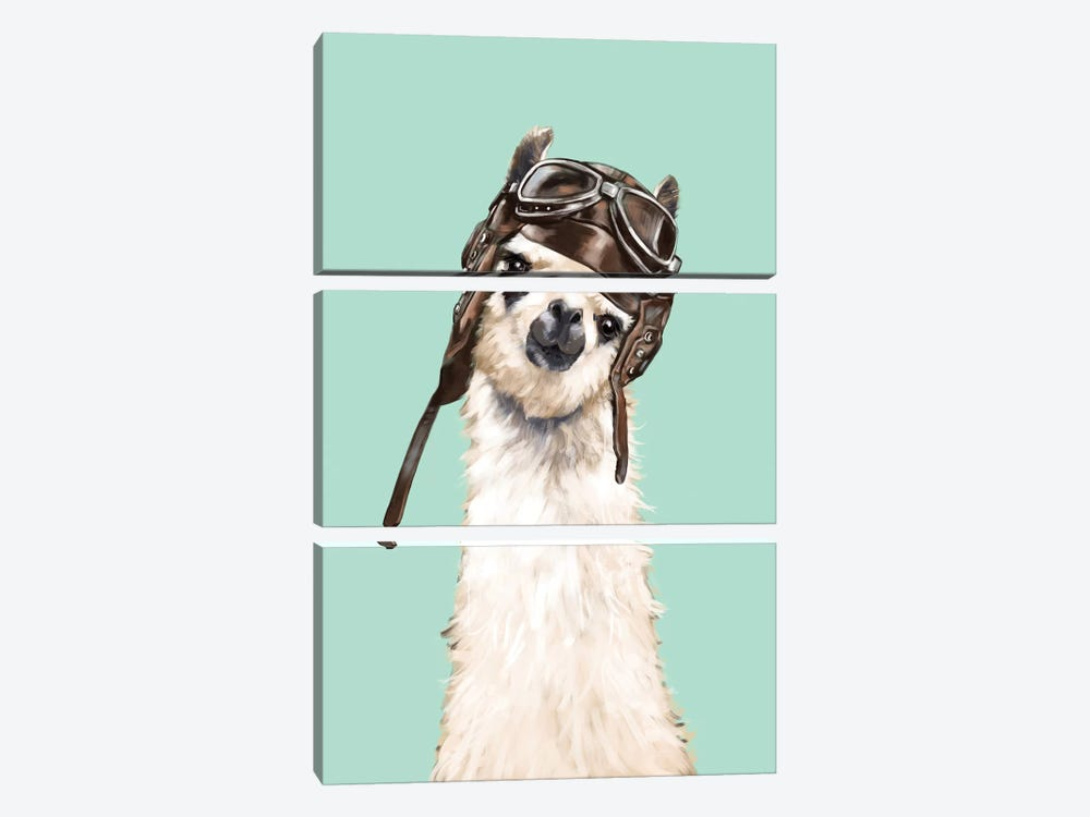 Cool Pilot Llama by Big Nose Work 3-piece Canvas Wall Art