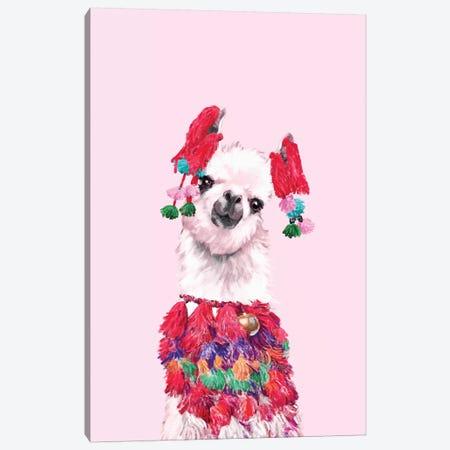 Coolest Llama Canvas Print #BNW42} by Big Nose Work Art Print