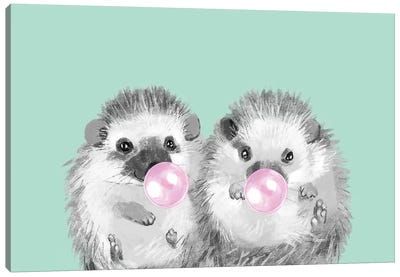 Playful Twins Hedgehog Canvas Art Print