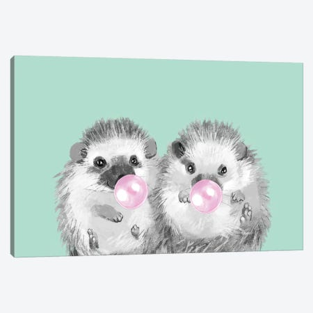 Playful Twins Hedgehog Canvas Print #BNW63} by Big Nose Work Art Print