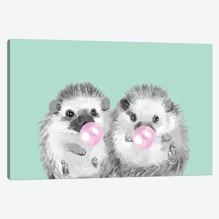 Playful Twins Hedgehog Canvas Print #BNW63} by Big Nose Work Art Print
