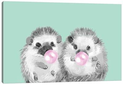 Playful Twins Hedgehog Canvas Art Print