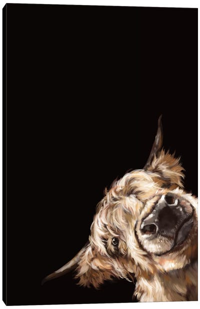 Sneaky Highland Cow In Black Canvas Art Print