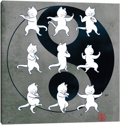 Cat Tai Chi Canvas Art Print