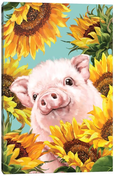 Baby Pig With Sunflower Canvas Art Print