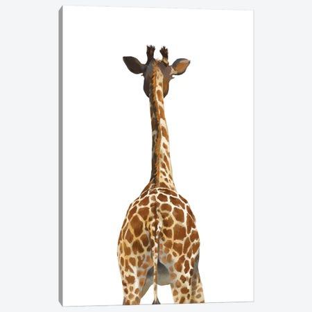 Giraffe Butt Canvas Print #BNW94} by Big Nose Work Art Print