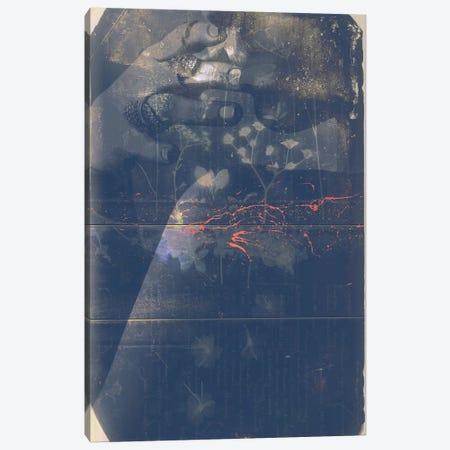 Lumen II Canvas Print #BNZ157} by 33 Broken Bones Canvas Art Print