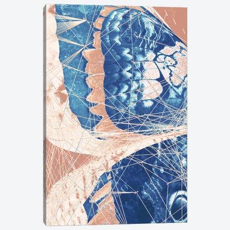 Butterfly Triptych I Canvas Print #BNZ174} by 33 Broken Bones Canvas Art Print