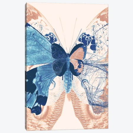 Butterfly Triptych II Canvas Print #BNZ175} by 33 Broken Bones Art Print