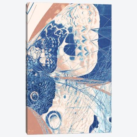 Butterfly Triptych III Canvas Print #BNZ176} by 33 Broken Bones Art Print