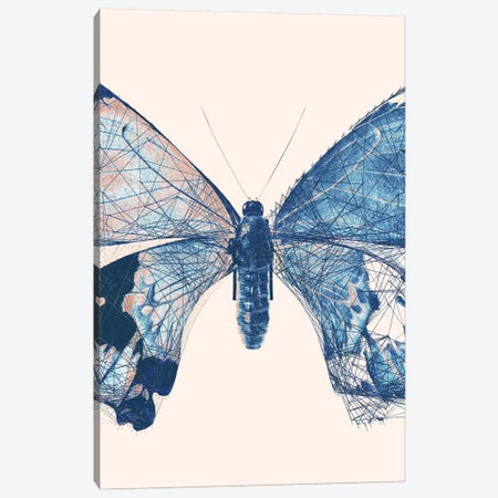 Butterfly V Canvas Print #BNZ178} by 33 Broken Bones Canvas Artwork