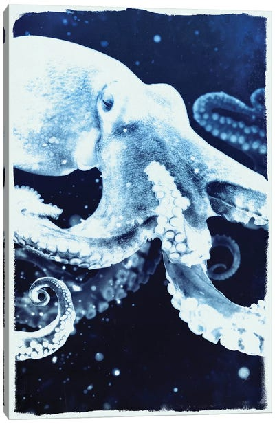 Indigo Octopus Canvas Art Print