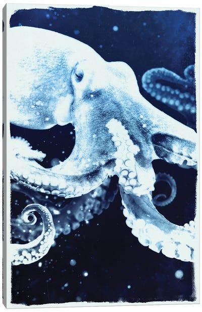 Indigo Octopus Canvas Art Print