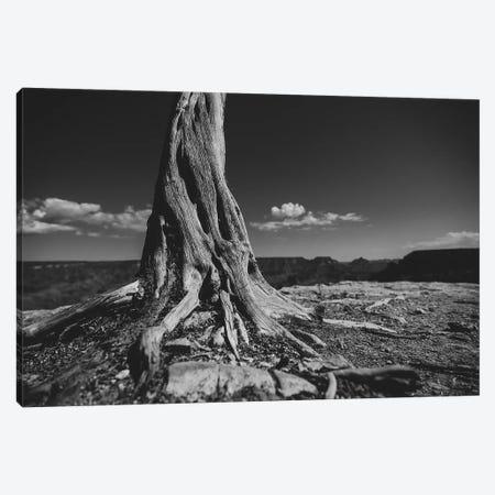 Grand Canyon II Canvas Print #BNZ58} by 33 Broken Bones Canvas Art Print