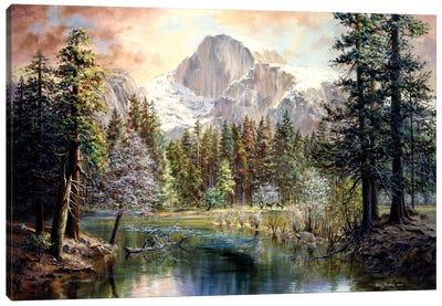 Nature's Wonderland Canvas Print #BOE115